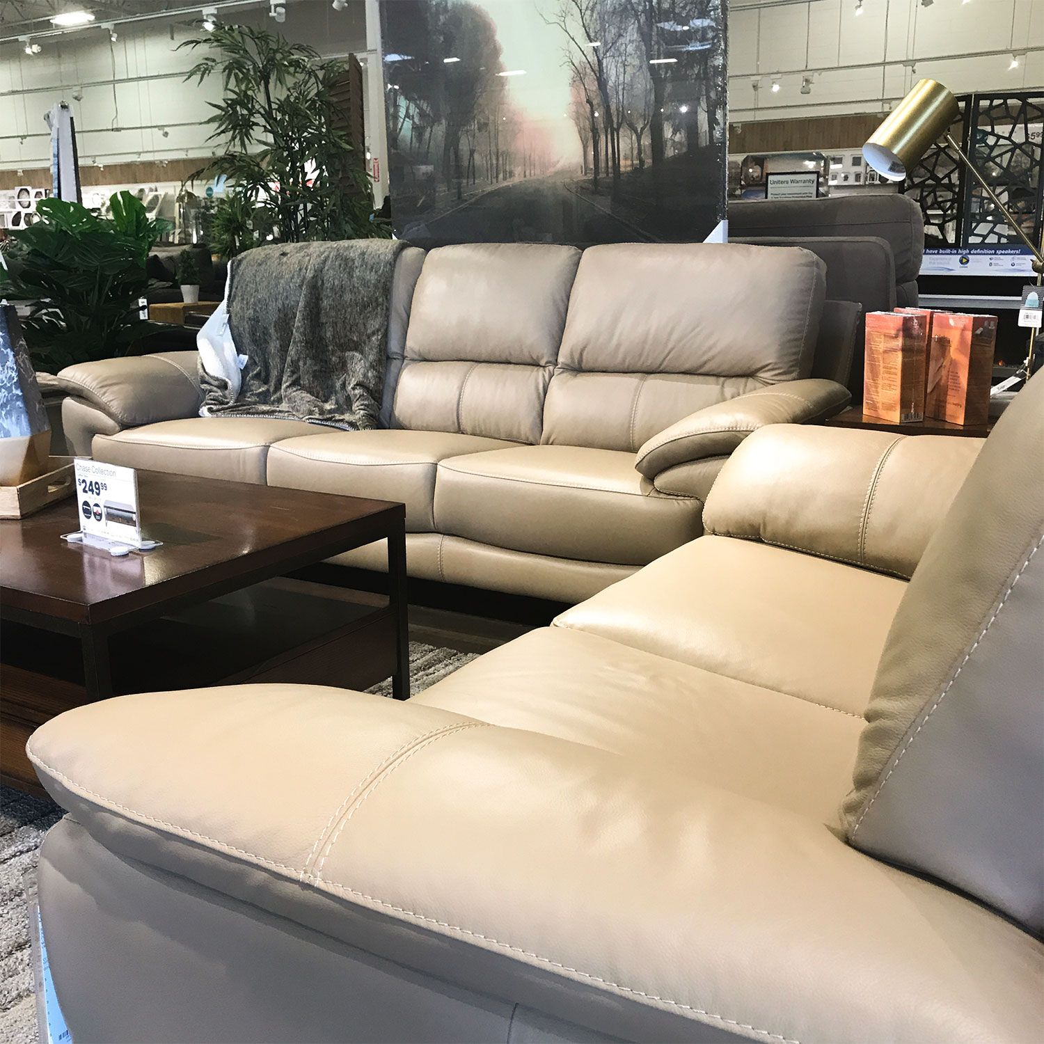 Wynwood Sofa Leather Sofa Comes In Two Colors Modern Design Modern Home Furniture Home Furniture Home Decor