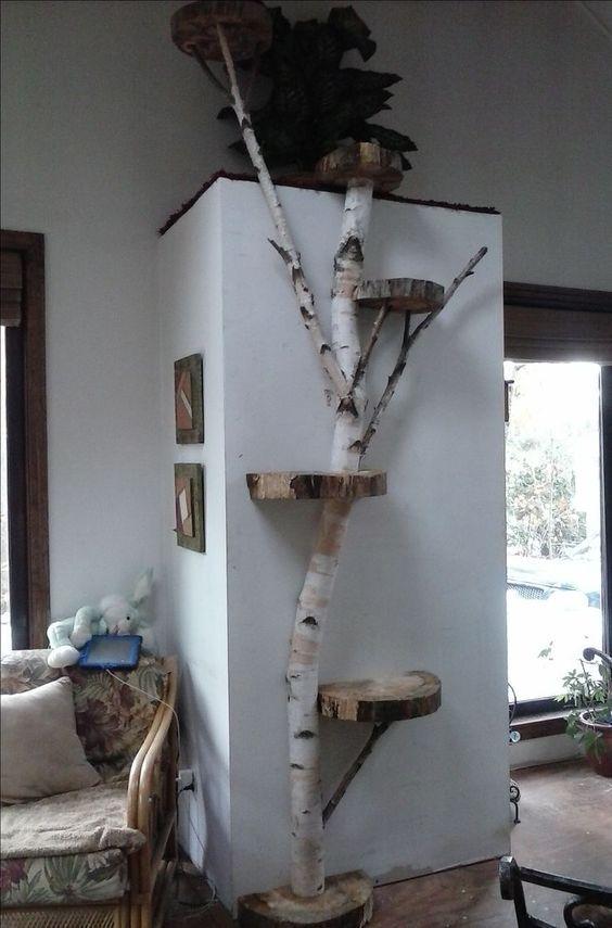 White Birch wall cat tree Wood Wall