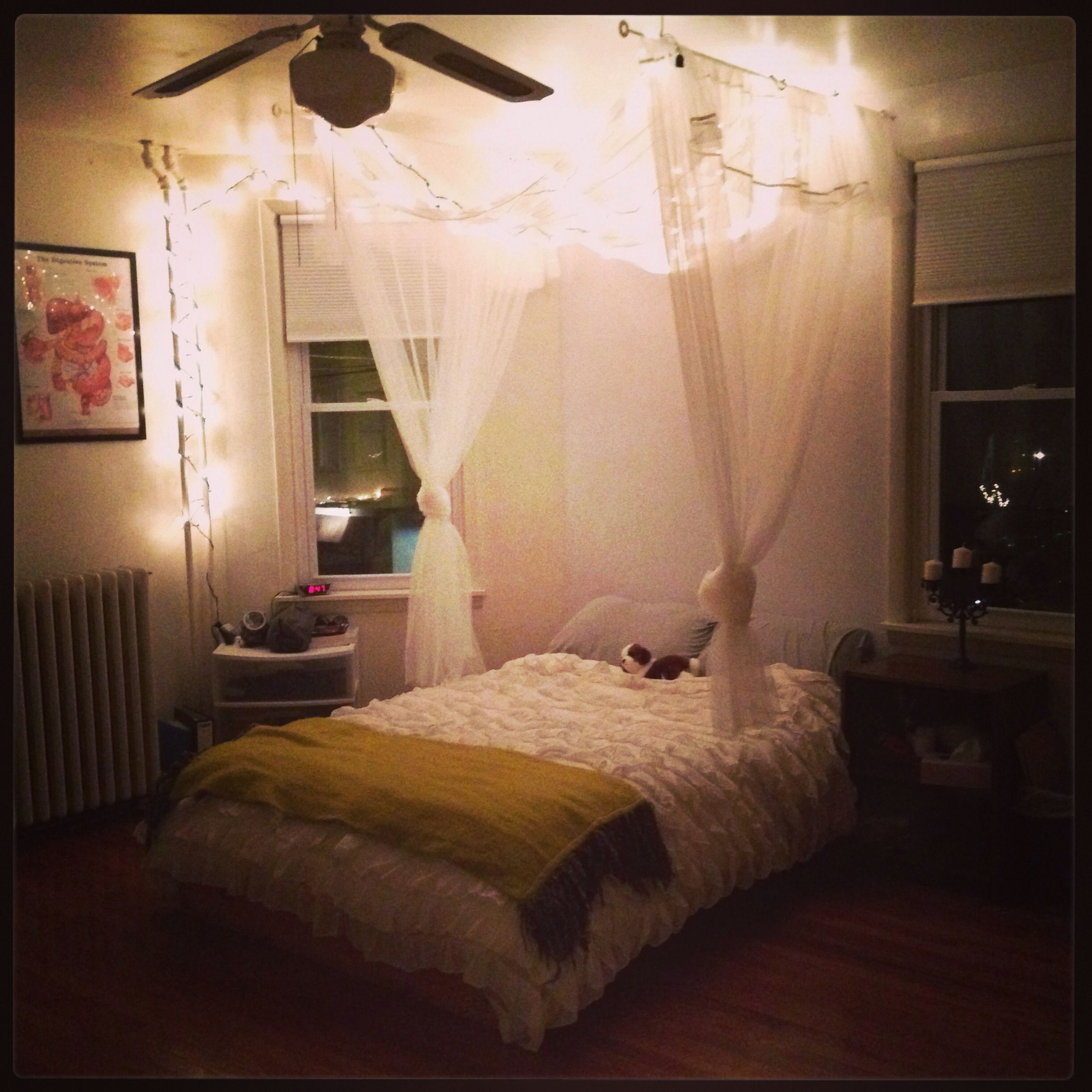 yesterday I made this amazing canopy over my bed with 15