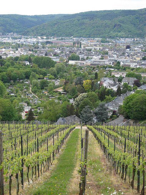 Trier, Petrisberg: wunderschöne Aussicht auf Trier! | 西ドイツ