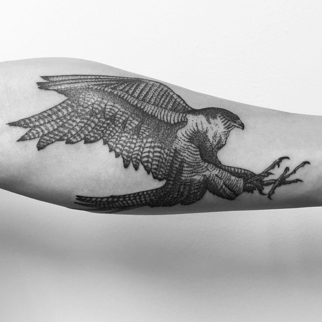 My Peregrine Falcon Tattoo Tattoo by Jerimiah Griswald ... White Falcon Bird Tattoo