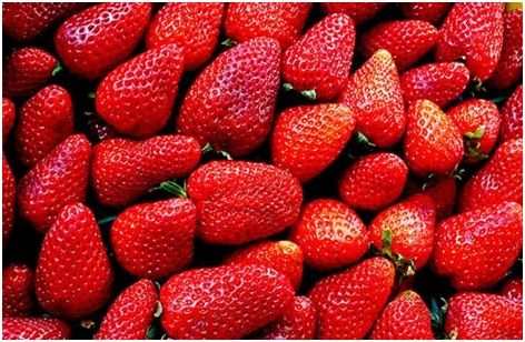 Adding #strawberries to your daily #diet could help protect against #diabetes and #heart disease.