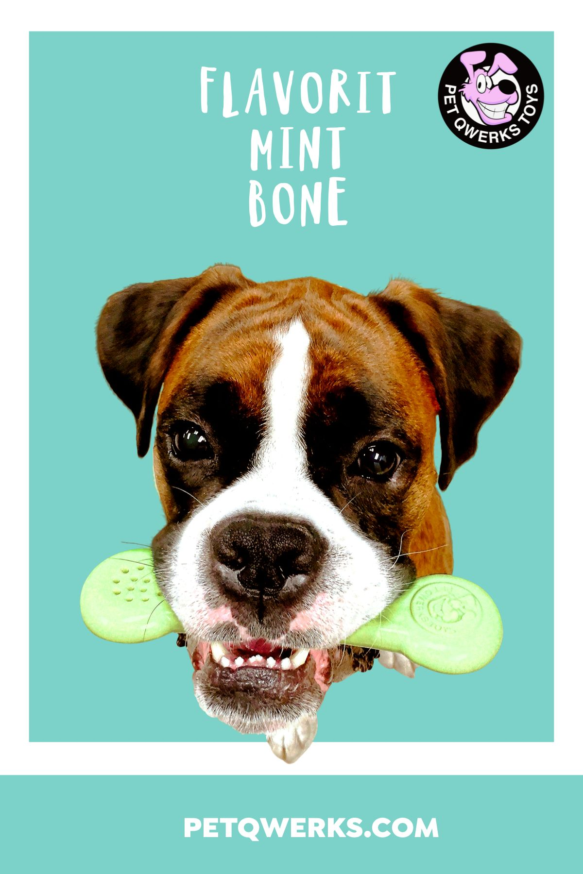 Pet Qwerks Flavorit Breath Bone Mint Infused Dog Chew Toy Dog
