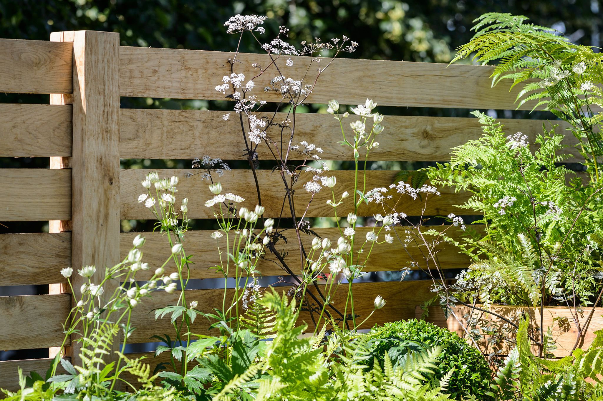Discover Nine Ideas For Garden Walls And Fences, Including Striking