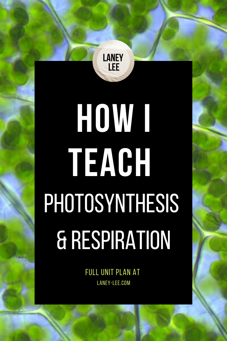Photosynthesis Unit for Middle School PDF Worksheets