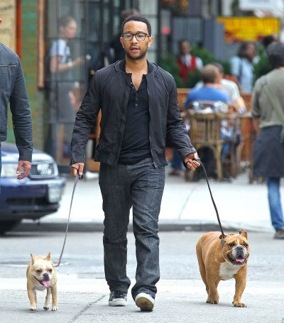 John Legend Bulldogs Celebrity Dogs Famous Dogs Man And Dog