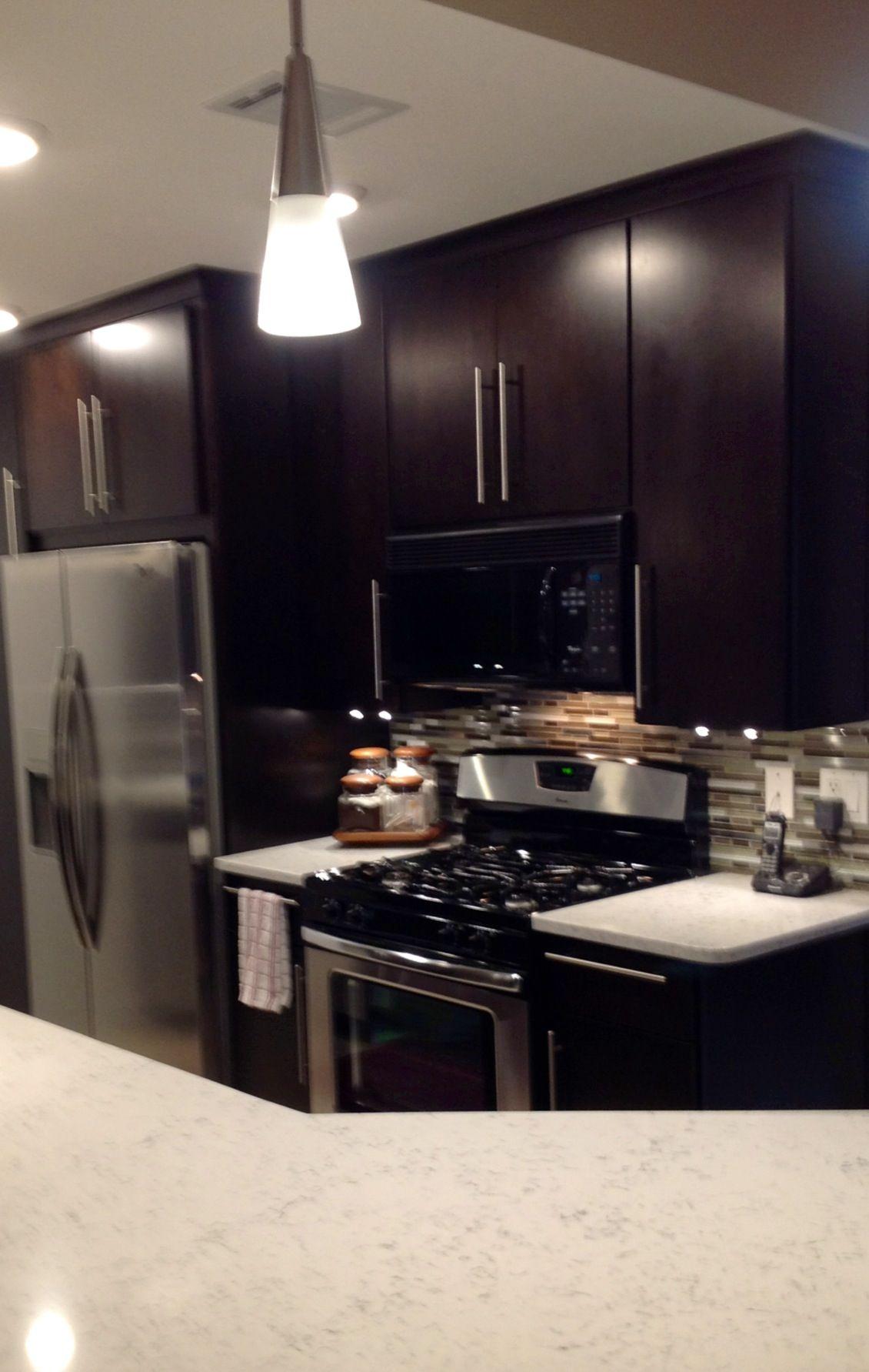 Modern Kitchen High Contrast Cabinets Countertop Quartz Espresso Maple Slab Door Glass Stainless Backs Espresso Kitchen Cabinets Modern Kitchen Kitchen
