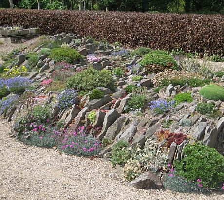 Pershore Garden Articles Alpine Garden Society Gardens Best Alpine Garden Design