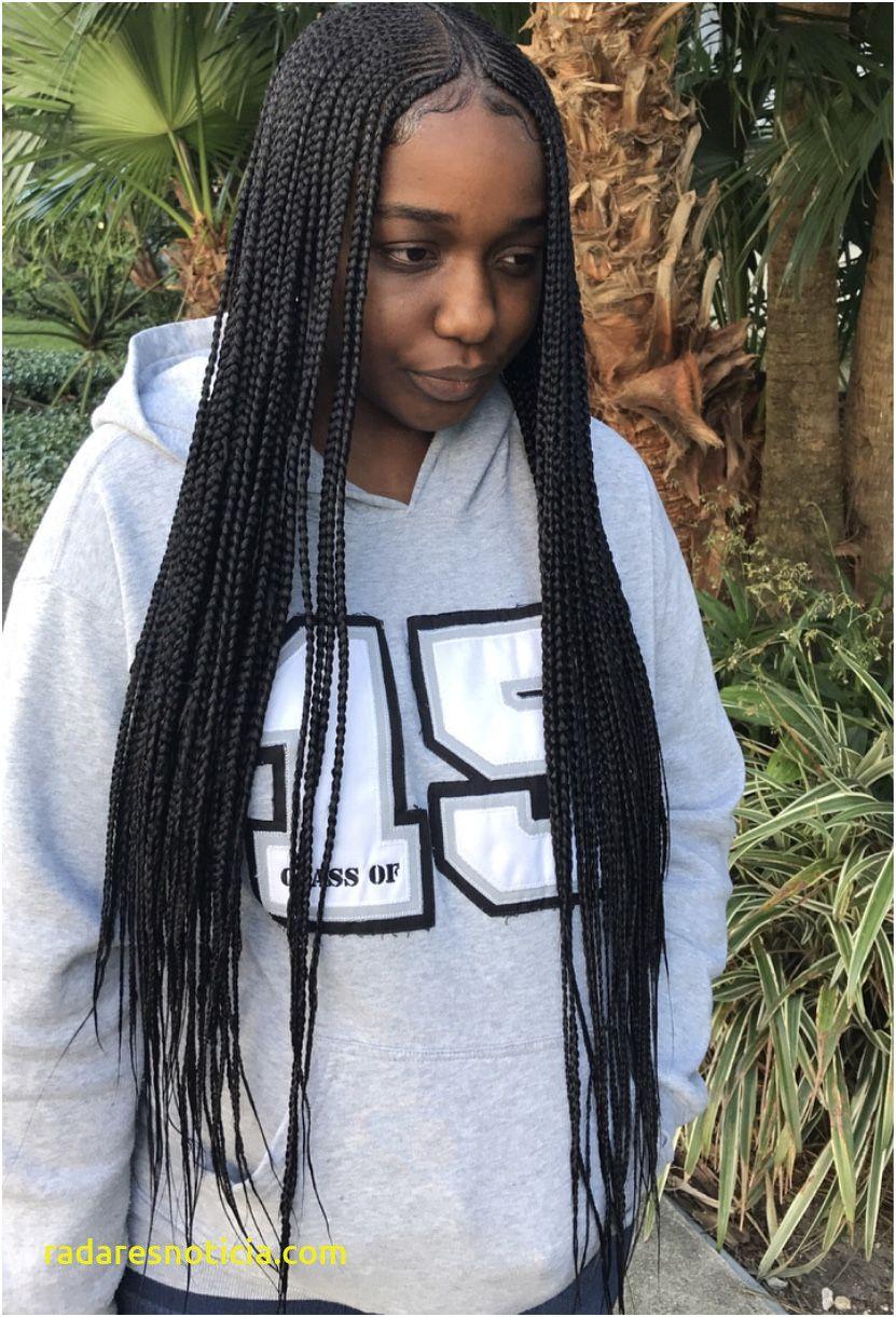 Unique Braids Hairstyles 2019 Female \u2013 Braids Hairstyles