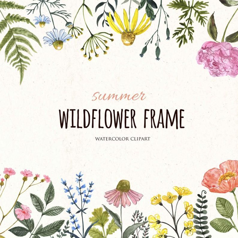 Watercolor Wildflower Floral Frame Border Clip Art Summer Wild Etsy Wildflower Drawing Watercolour Wedding Stationery Floral Drawing