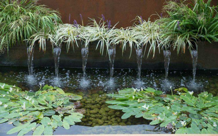 Plantes vivaces gramin es et arbres dans le jardin - Plante de bassin filtrante ...