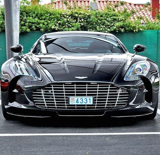 Aston Martin beautifu!!! the lines... the shine.. it's a nice dark color!!