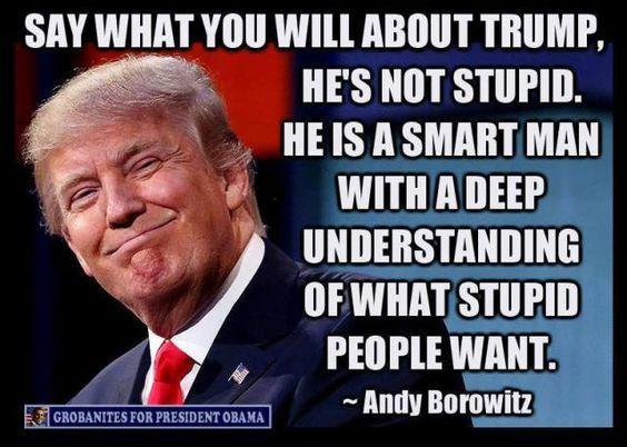 Image result for trump dumb man smart man