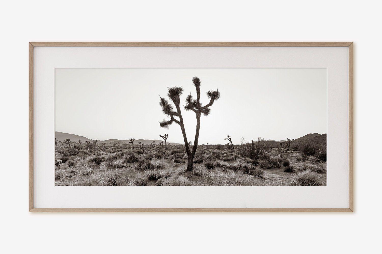 Desert Decor Joshua Tree Poster- Black and White Art Print Desert Print Joshua Tree Wall Art Digital Printable Printable Art