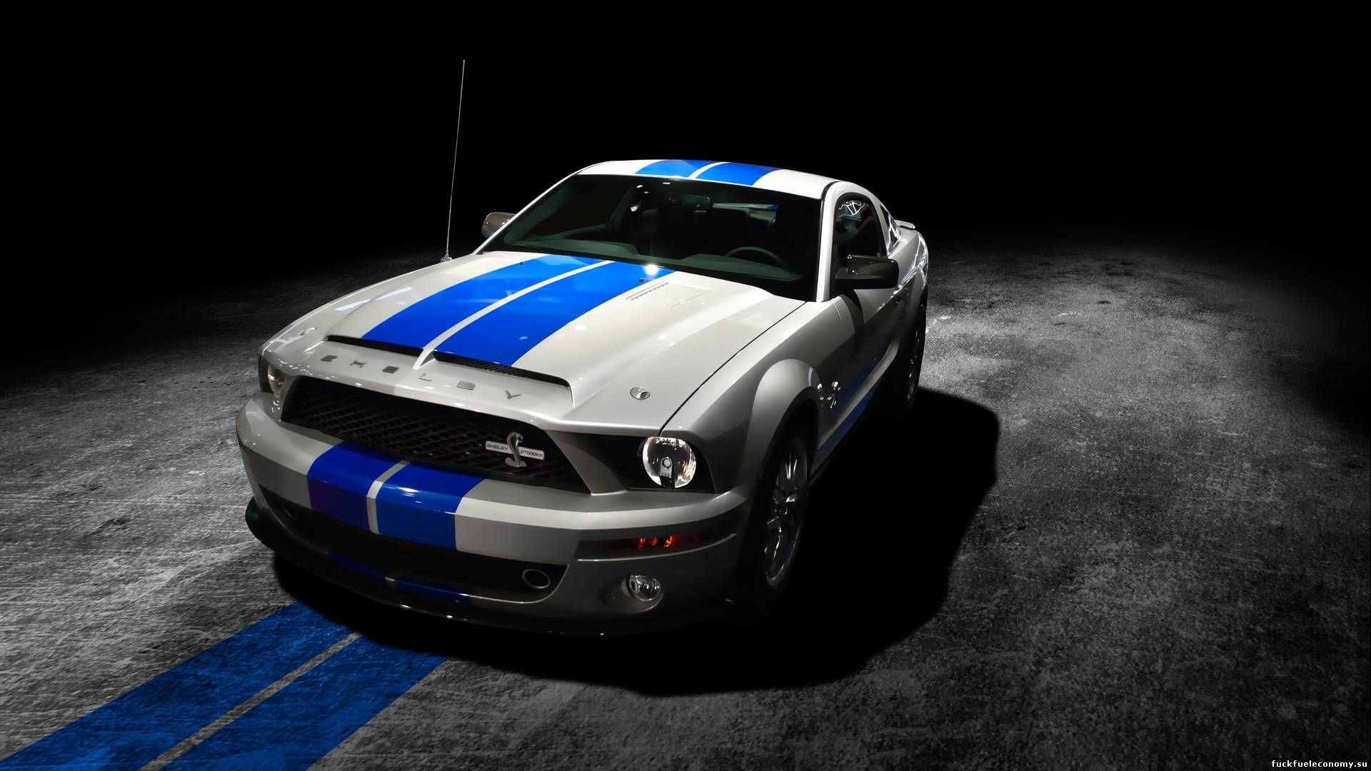 Keyword 12014 mustang shelby super snake price html keyword 2 2014 mustang shelby super snake price html keyword 3 2014 mustang shelby super snake