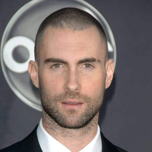Pictures Of Men S Hairstyles Adam Levine Butch Haircut