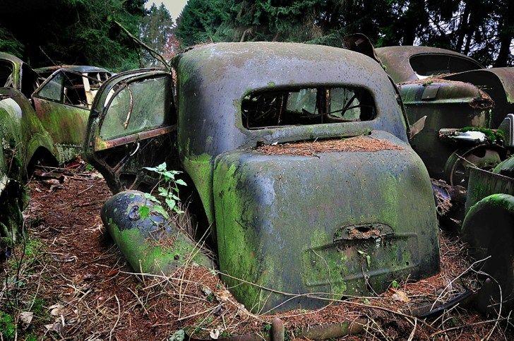 Abandoned Belgium   Abandoned-Cars-Chatillon-Belgium-6   Neglected ...