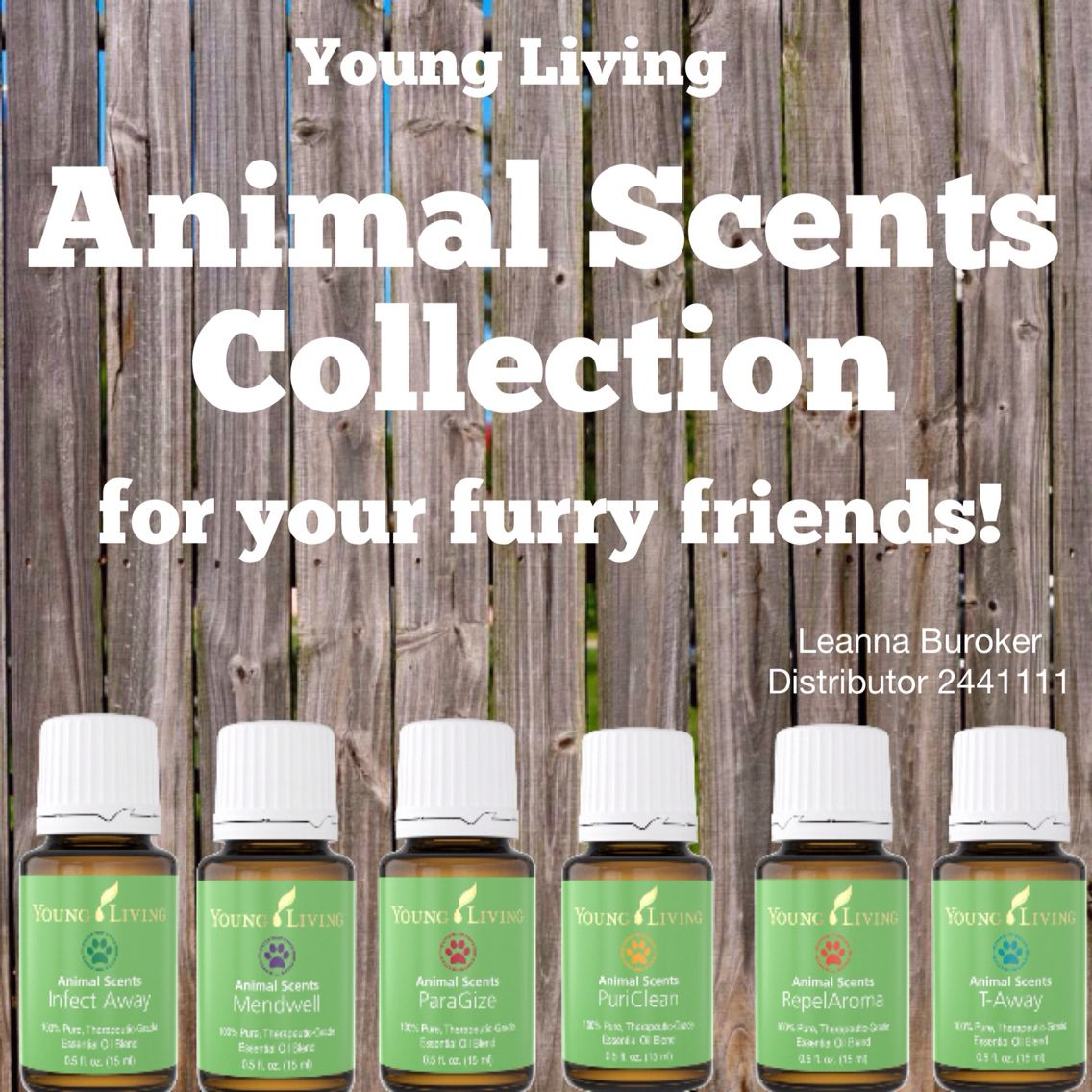 Essential Oils For Animals Essential Oils For Animals