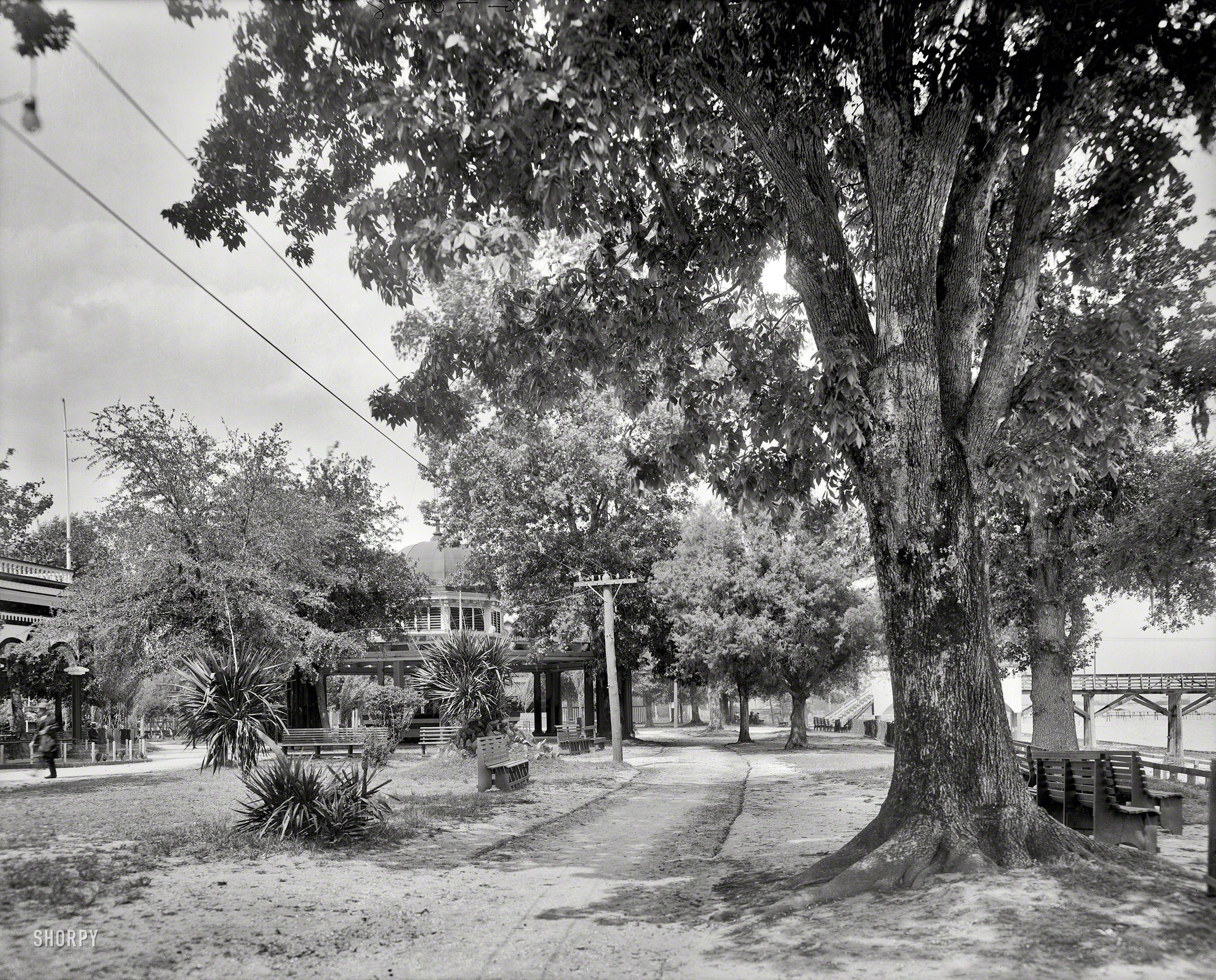 C 1910 Monroe Park Mobile Alabama Mobile Alabama Alabama Photo