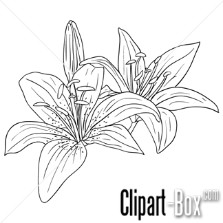 CLIPART FLOWERS SKETCH STYLE   Sketch?   Pinterest   Sketches ...