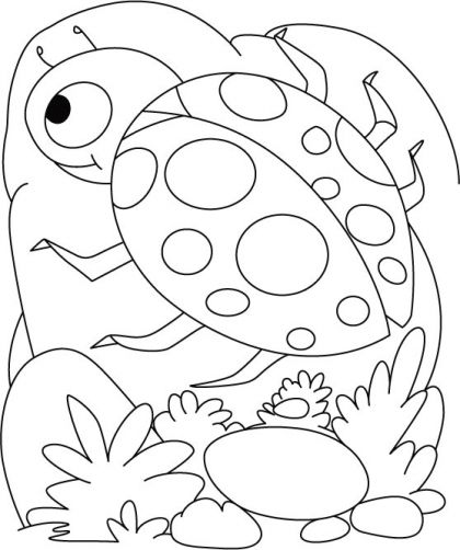 Ladybug egg shell coloring pages