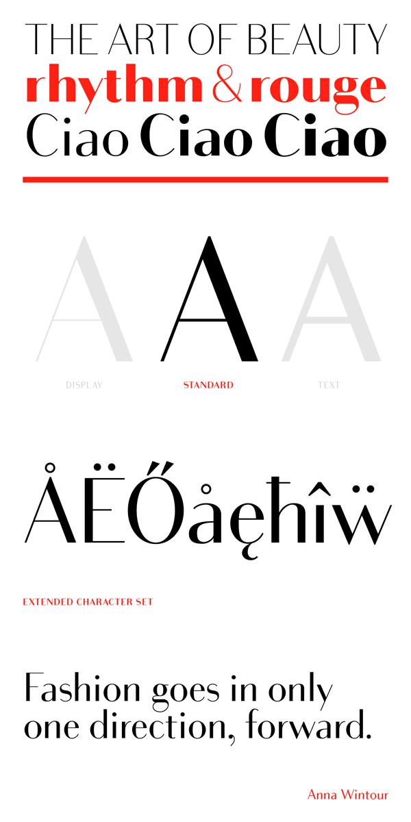 Bodoni Sans Font Family by Jason Vandenberg | 字儿 | Font family