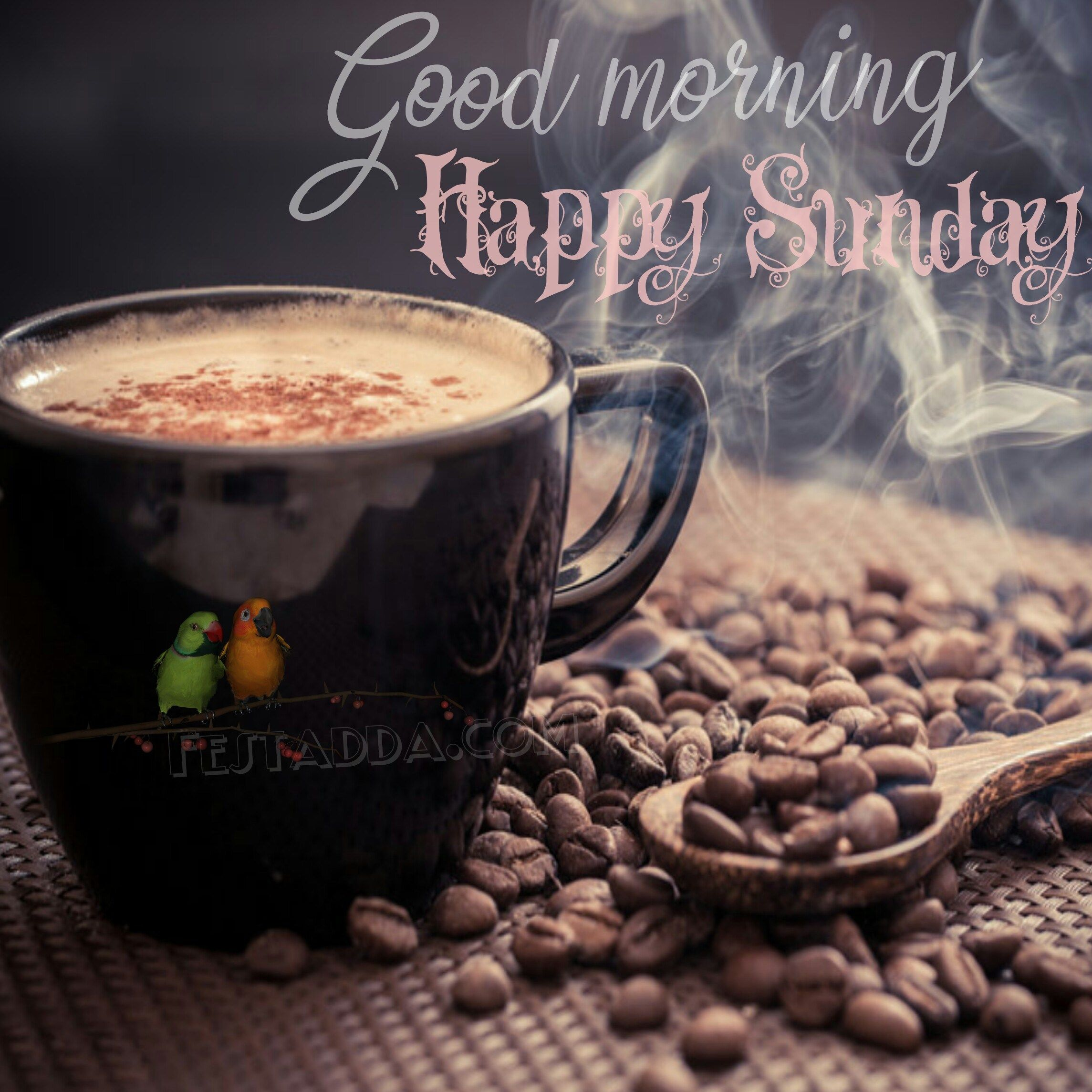 Happy Sunday Images For Whatsapp Status Facebook Dp Full Hd
