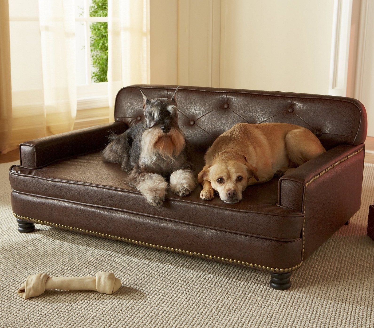 25 Basics From Walmart All Dog Owner S Should Have Leather Dog