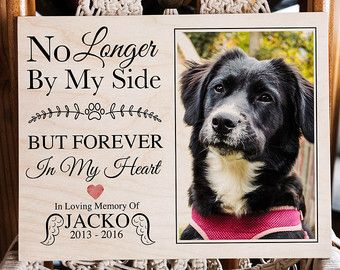 pet memorial gift for pet loss in memory of dog dog - Dog Memorial Picture Frames