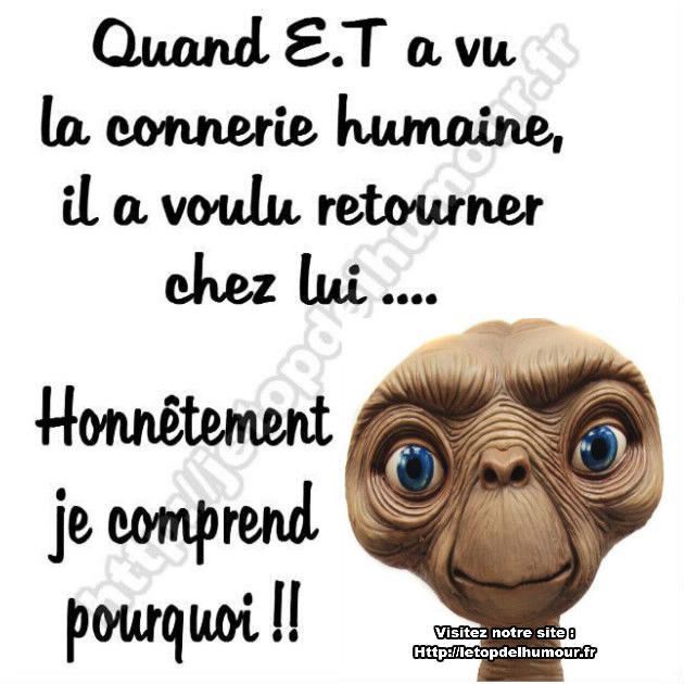 La Connerie Humaine Connerie Humour Et Humain