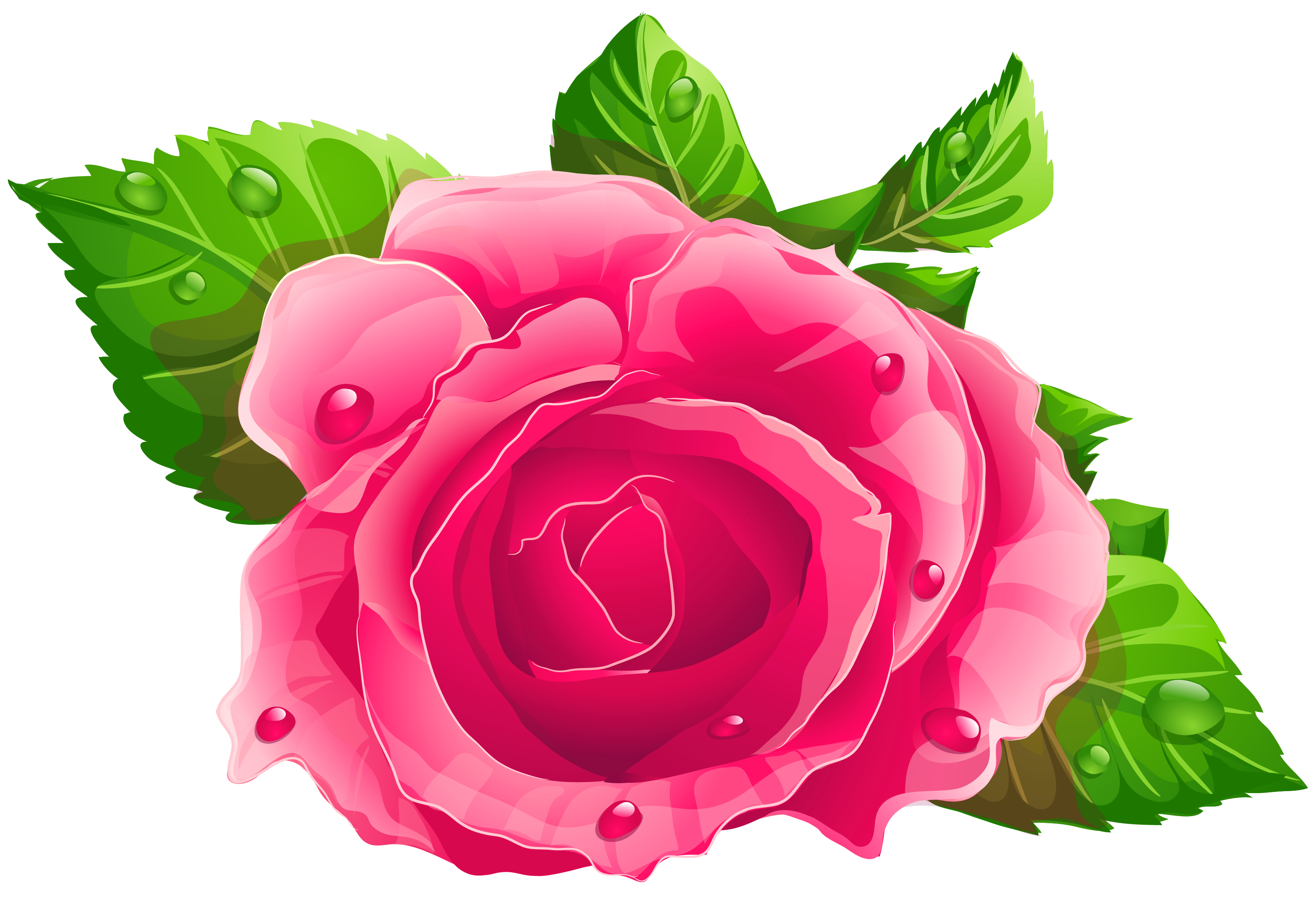 Pin By Solo Dios Basta On Cute Pink Rose Png Rose Clipart Flowers
