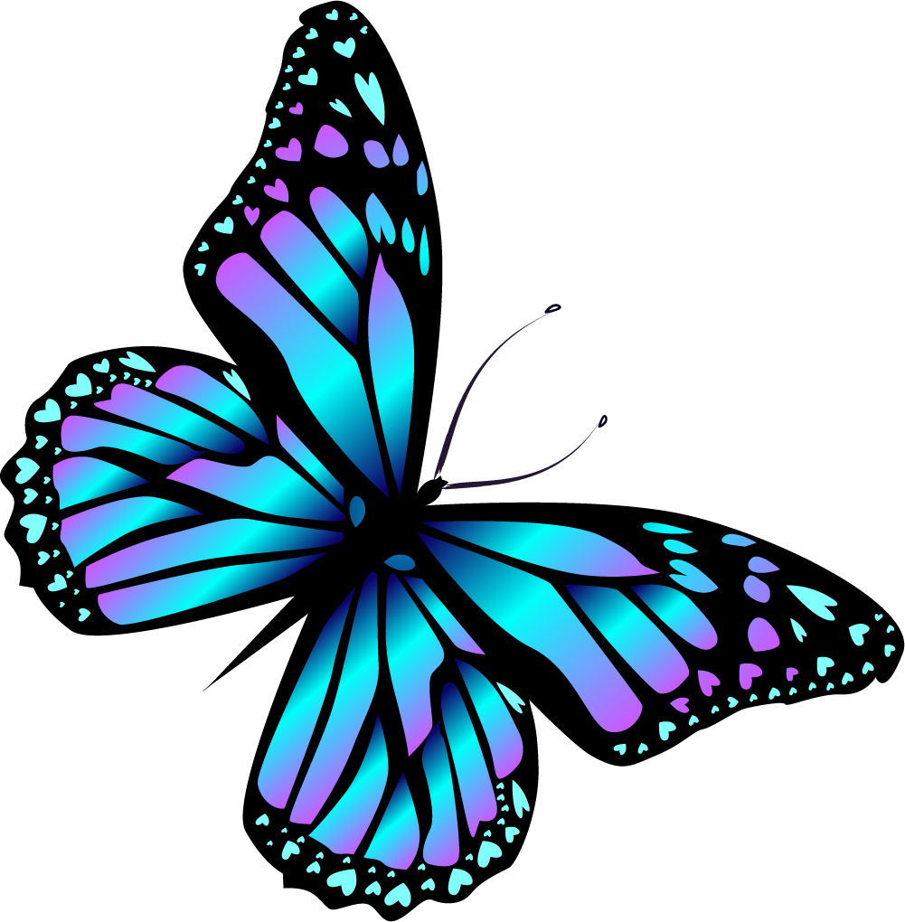 medium resolution of image result for transparent butterfly clipart