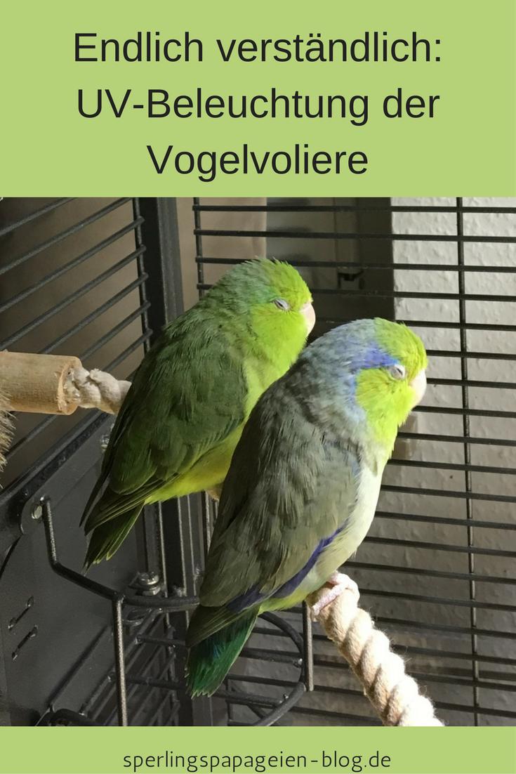Uv Lampe Fur Die Beleuchtung Von Vogelvolieren Vogelvoliere Papagei Beleuchtung