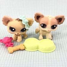 Littlest Pet Shop Lps 1171 438 Tan Brown Cream Chihuahua Lot