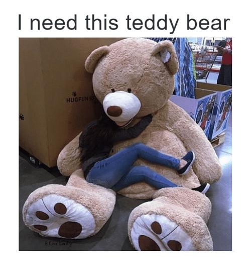 Memes Bear And Need This Teddy Bear Hugfun Teddy Bear