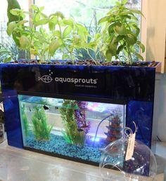 Aquasprouts Self Cleaning Aquaponics Garden Aquarium