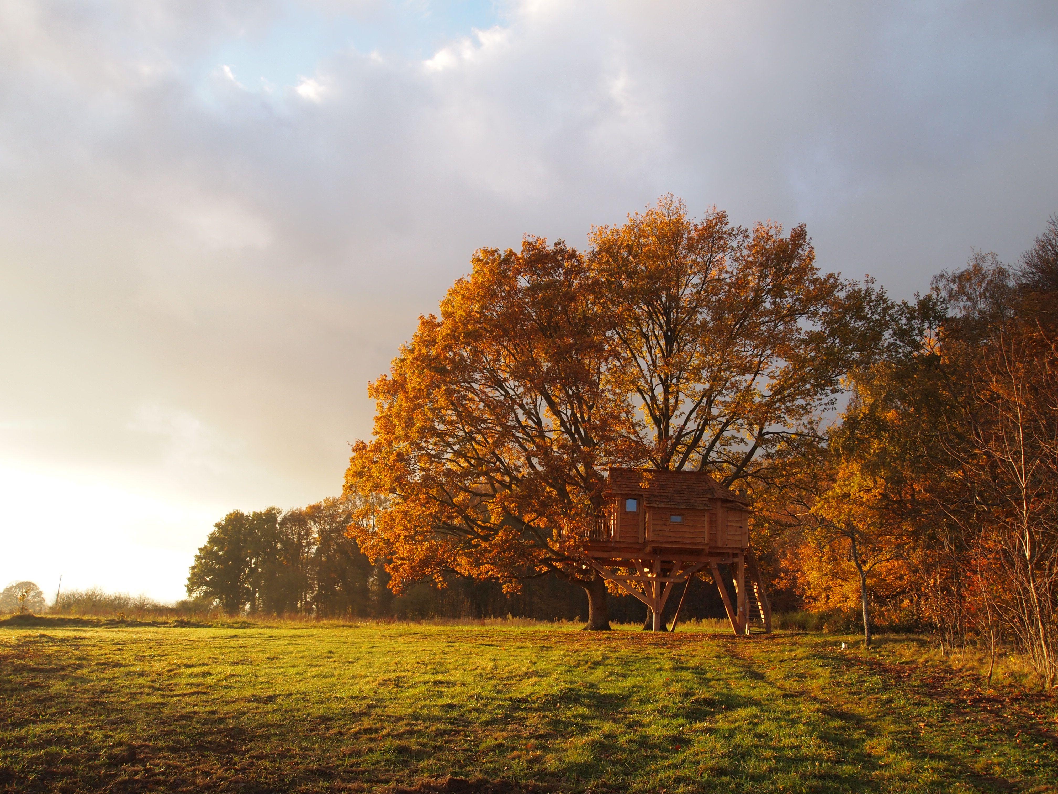 La cabane du Perche à l'automne