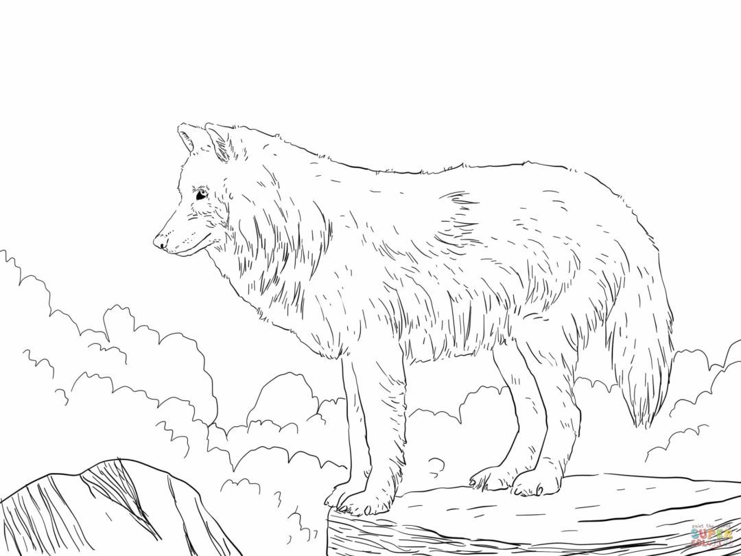 Wolf Coloring Pages Coloring Pages Wolf Colors Horse Coloring