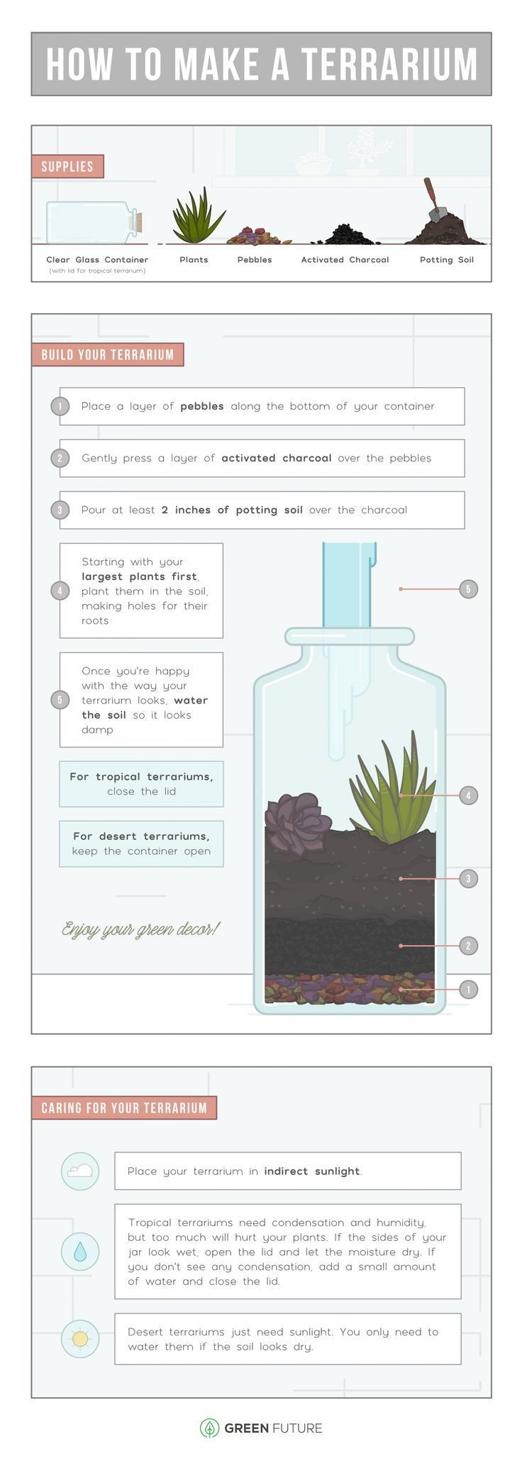 Photo of How To Make A Terrarium: The Complete Beginner's Guide