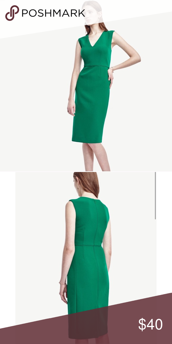 Ann Taylor Piped Double Weave Shift Dress Green The Perfect
