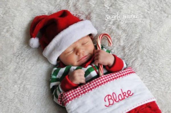 Newborn twins christmas photo