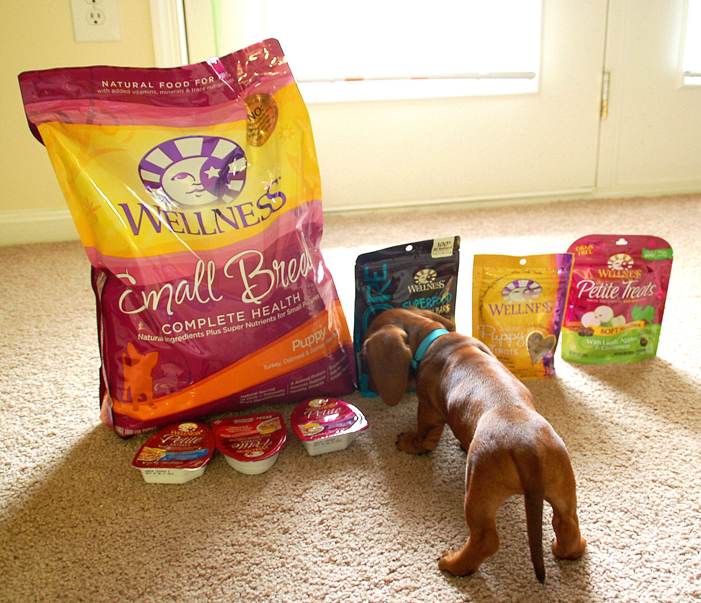 Pete S Favorite Food Wellness Product Reviews Puppies Puppy