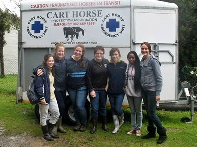 The Cart Horse Protection Association Volunteers at work. ❤ Your donation will make a difference ❤ Email: info@carthorse.or... www.carthorse.org.za
