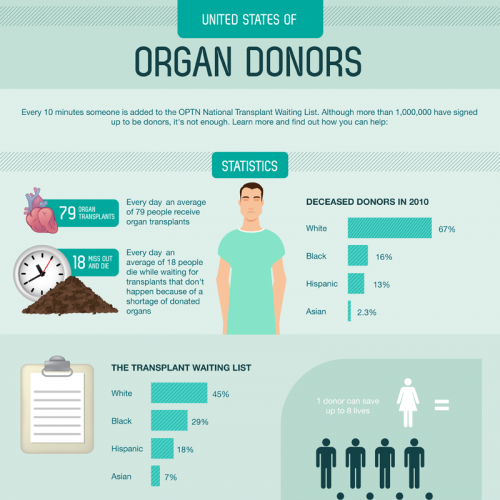 Appendage Donation : The Body organ Donor
