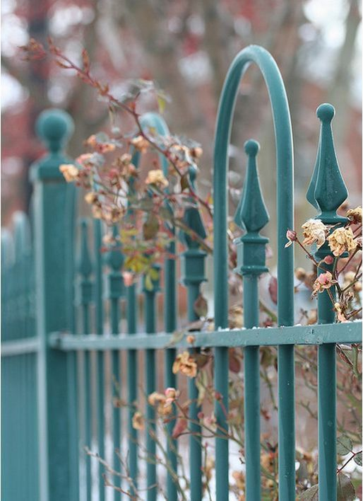Blue Wrought Iron Fence What About Color Color Inspiration