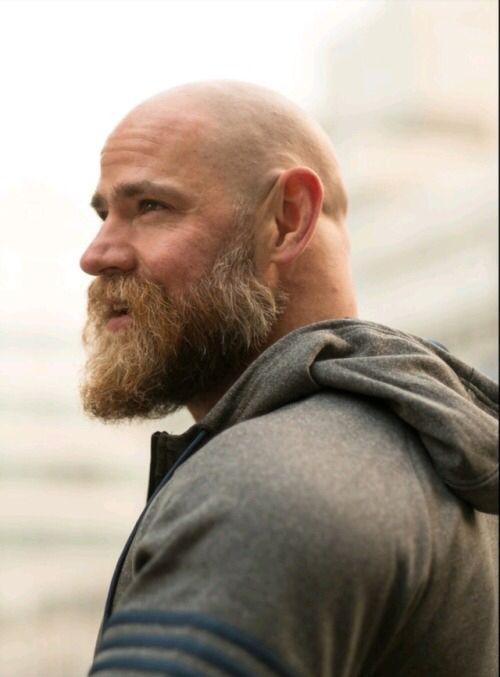 Bald Beard  Man Stuff In 2019  Bald Men With Beards -2533