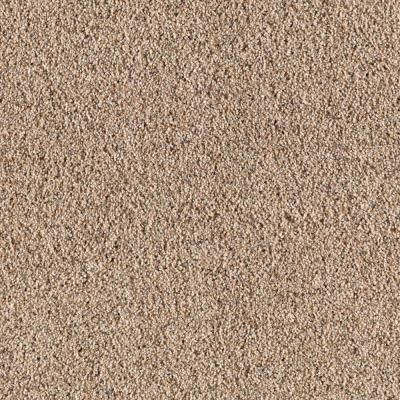 SoftSpring Enthusiastic I - Color Oyster Shell 12 ft. Carpet-0332D-24-12 - The Home Depot