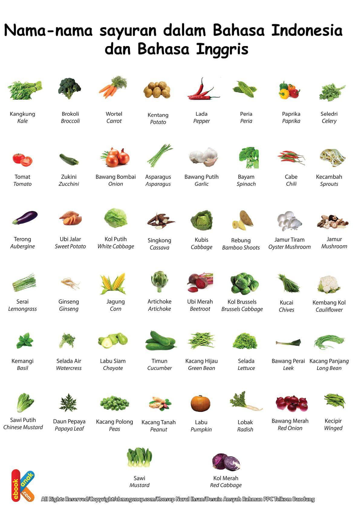 Poster Belajar Mengenal Sayur Sayuran 2 Bahasa Indonesia Inggris
