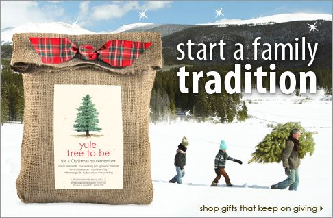 Gifts that keep on giving, Yule Tree-To-Be $23