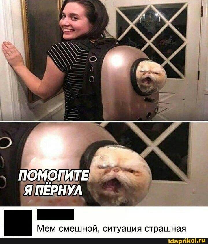 Мем смешной, ситуация страшная - ) / АйДаПрикол .)